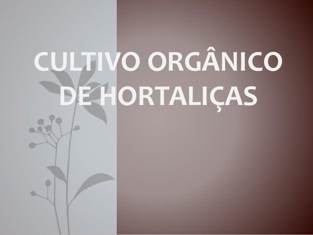 CULTIVO ORGÂNICO  DE HORTALIÇAS