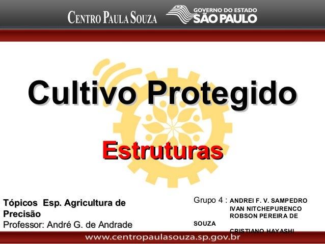 Cultivo ProtegidoCultivo Protegido Grupo 4 : ANDREI F. V. SAMPEDRO IVAN NITCHEPURENCO ROBSON PEREIRA DE SOUZA CRISTIANO HA...