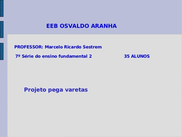 EEB OSVALDO ARANHA  PROFESSOR: Marcelo Ricardo Sestrem 7º Série do ensino fundamental 2  35 ALUNOS Projeto pega varetas
