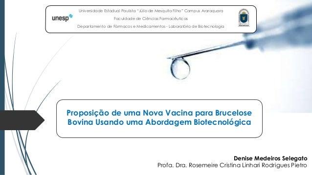 """Universidade Estadual Paulista """"Júlio de Mesquita Filho"""" Campus Araraquara Faculdade de Ciências Farmacêuticas Departament..."""