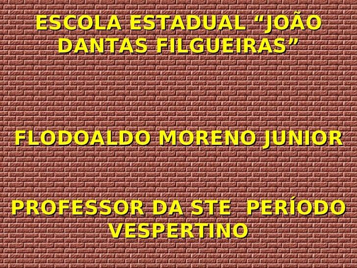 """ESCOLA ESTADUAL """"JOÃO DANTAS FILGUEIRAS"""" FLODOALDO MORENO JUNIOR PROFESSOR DA STE  PERÍODO VESPERTINO"""