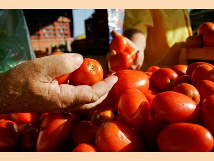 Recortes (e sons)de uma Feira Livre Ir à feira é um hábito que atravessa os séculos. Ostoldos alaranjados, frutas e verdur...