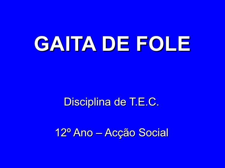 GAITA DE FOLE Disciplina de T.E.C. 12º Ano – Acção Social