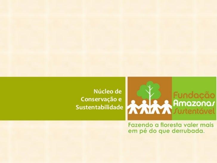 Núcleo de  Conservação e  Sustentabilidae