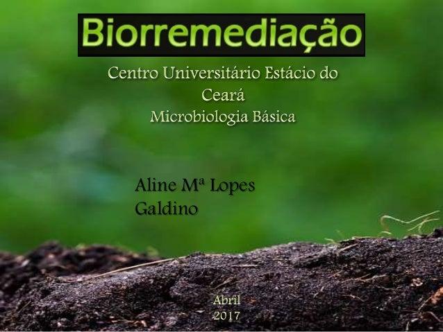 Aline Mª Lopes Galdino