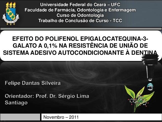 Universidade Federal do Ceará – UFC      Faculdade de Farmácia, Odontologia e Enfermagem                    Curso de Odont...