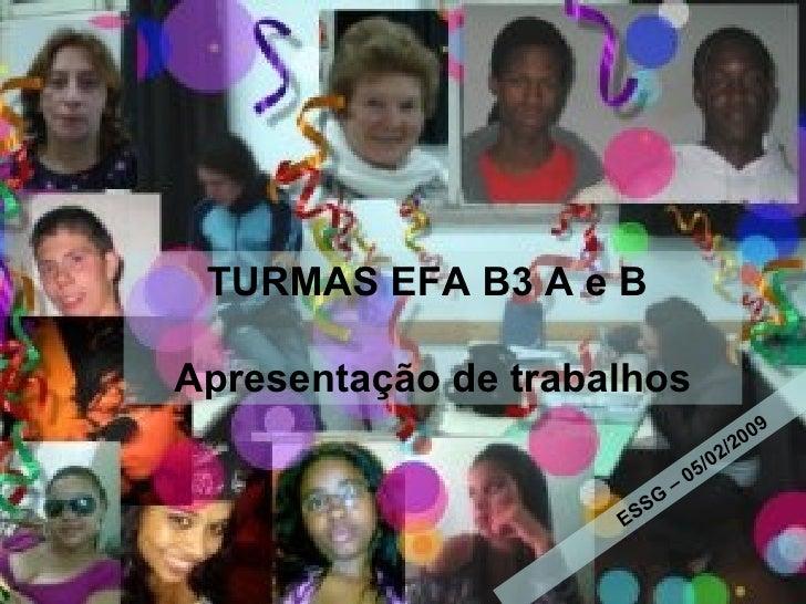 05/02/2009 Escola Secundária Sebastião da Gama TURMAS EFA B3 A e B  Apresentação de trabalhos ESSG – 05/02/2009