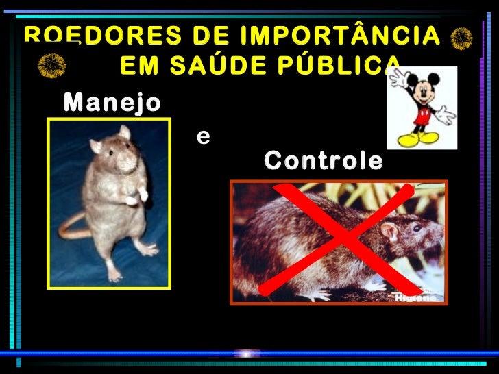 ROEDORES DE IMPORTÂNCIA  EM SAÚDE PÚBLICA Manejo e Controle