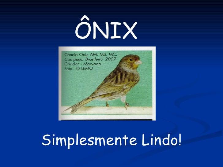 ÔNIX Simplesmente Lindo!