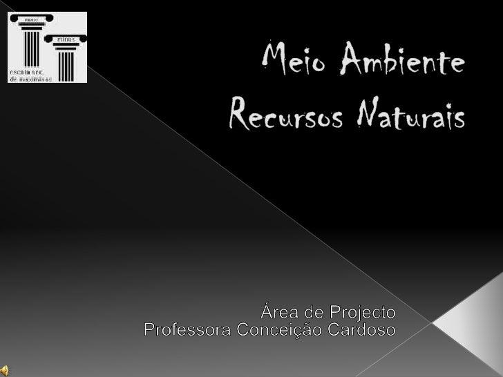 Meio AmbienteRecursos Naturais<br />Área de Projecto<br />Professora Conceição Cardoso<br />
