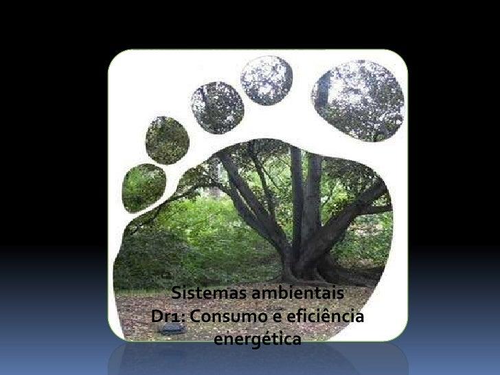 Sistemas ambientais<br />Dr1: Consumo e eficiência energética<br />