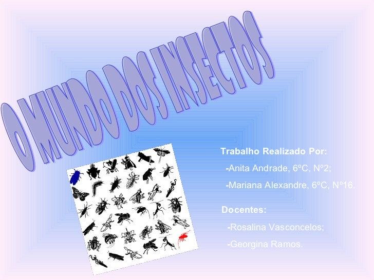 O Mundo dos Insectos Trabalho Realizado Por: - Anita Andrade, 6ºC, Nº2; - Mariana Alexandre, 6ºC, Nº16. Docentes: - Rosali...