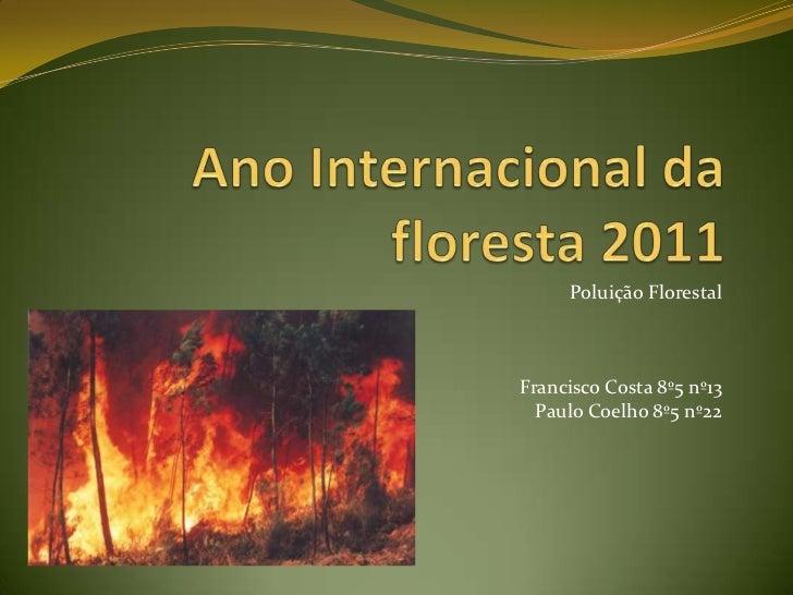 Ano Internacional da floresta 2011<br />Poluição Florestal<br />Francisco Costa 8º5 nº13<br />Paulo Coelho 8º5 nº22<br />