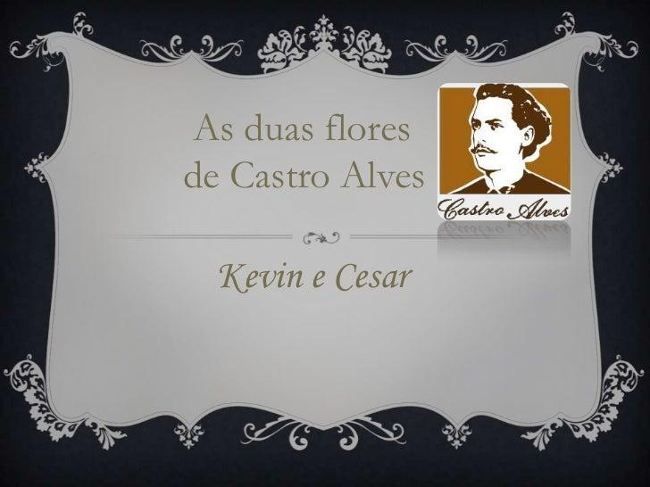 As duas flores de Castro Alves<br />     Kevin e Cesar<br />
