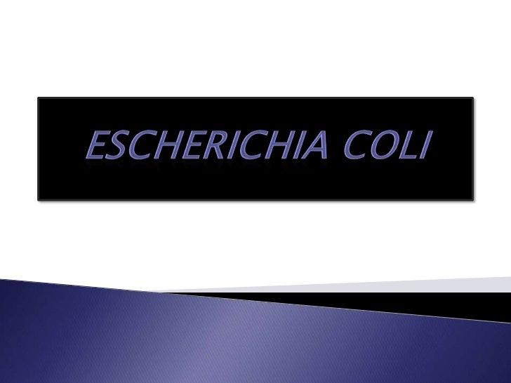 Escherichiacoli<br />