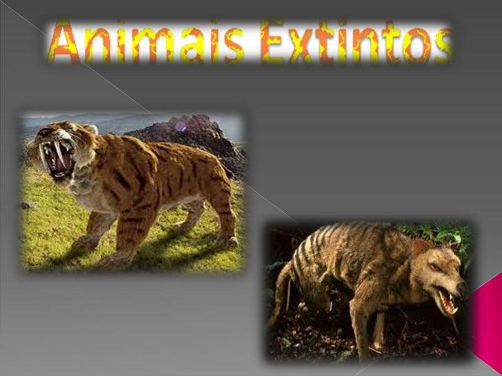 Smilodon, popularmente conhecido como Tigre-dentes-de-sabre, éum felino extinto, pertencente à subfamilia Machairodontinae...
