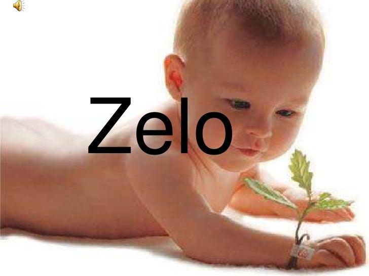 ZeloZelo