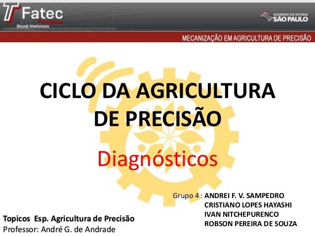 CICLO DA AGRICULTURA DE PRECISÃO  Diagnósticos Topicos Esp. Agricultura de Precisão Professor: André G. de Andrade  Grupo ...