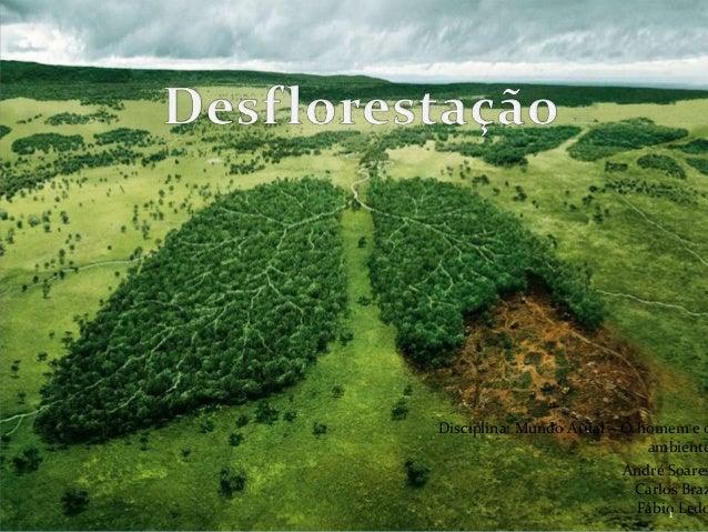 Disciplina: Mundo Atual – O homem e o ambiente André Soares Carlos Braz Fábio Ledo1