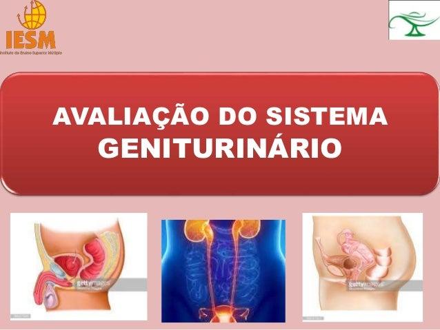 AVALIAÇÃO DO SISTEMA GENITURINÁRIO