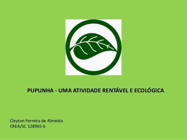 PUPUNHA - UMA ATIVIDADE RENTÁVEL E ECOLÓGICA Cleyton Ferreira de Almeida CREA/SC 128965-6