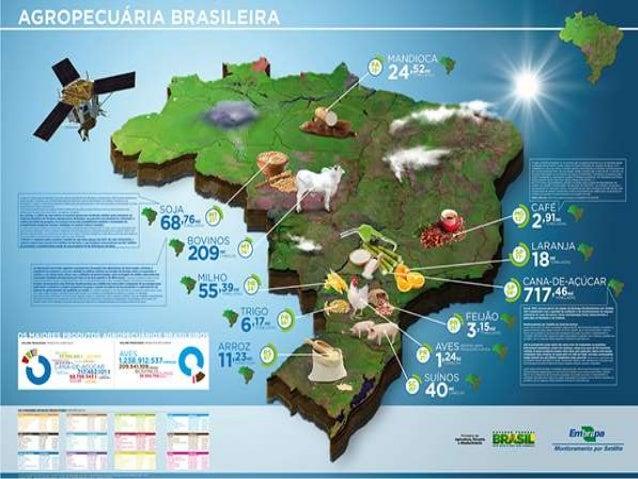 Trabalho e educação no brasil