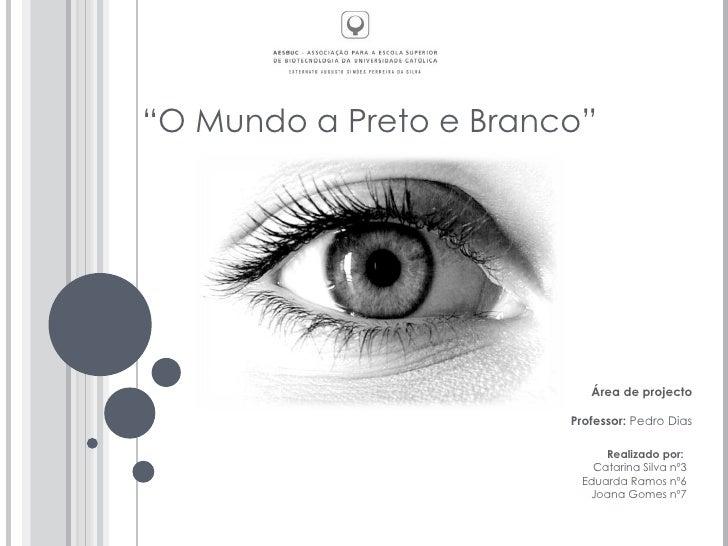 """"""" O Mundo a Preto e Branco"""" Área de projecto Professor:  Pedro Dias Realizado por:  Catarina Silva nº3 Eduarda Ramos nº6 J..."""