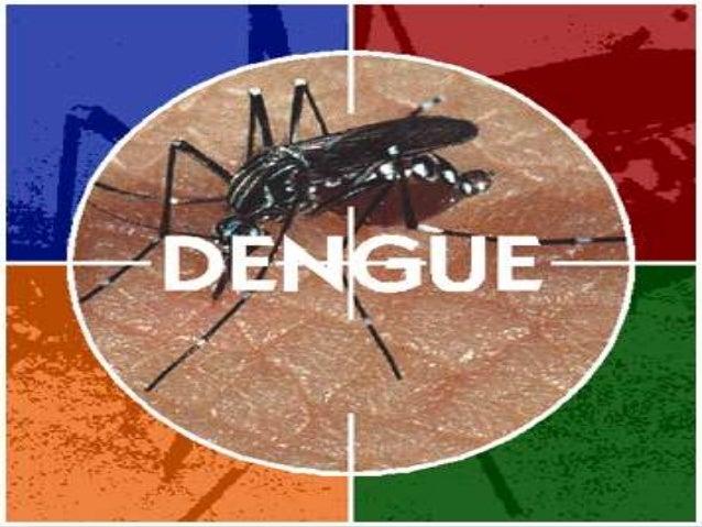  Dengue é a enfermidade causada pelo vírus  da dengue, um arbovírus da família  Flaviviridae, gênero Flavivírus, que incl...