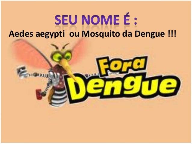 Aedes aegypti ou Mosquito da Dengue !!!