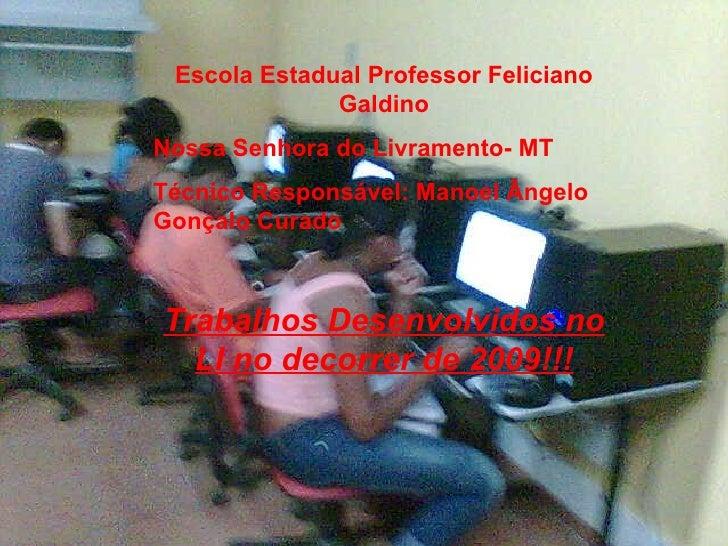 Escola Estadual Professor Feliciano Galdino Nossa Senhora do Livramento- MT Técnico Responsável: Manoel Ângelo Gonçalo Cur...
