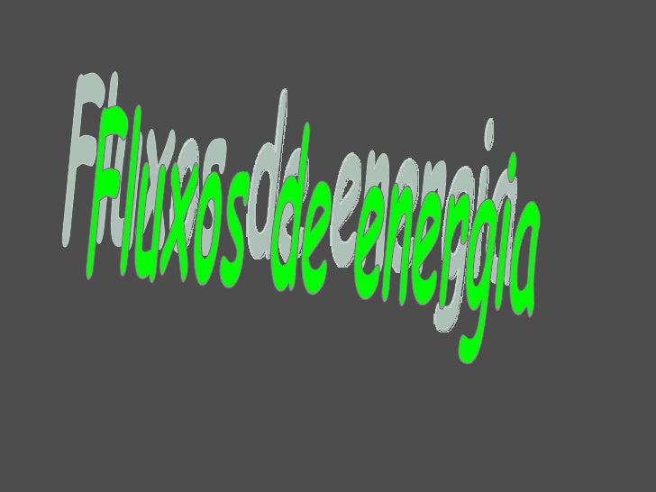 Fluxos de energia