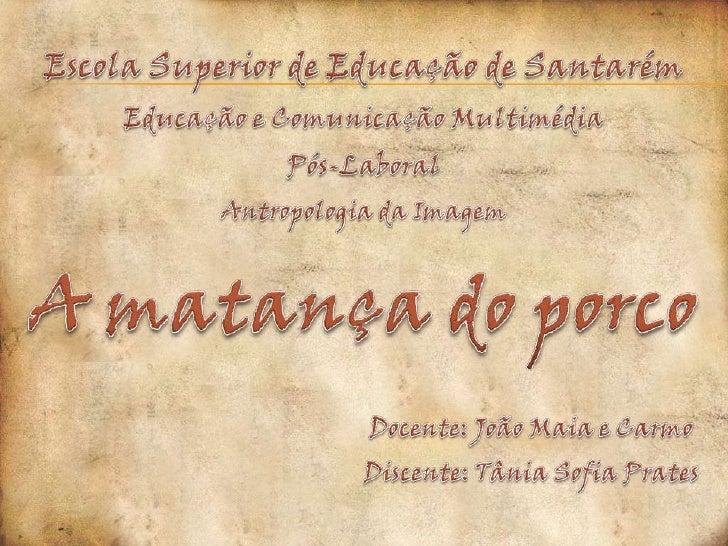 Escola Superior de Educação de Santarém<br />Educação e Comunicação Multimédia <br />Pós-Laboral<br />Antropologia da Imag...