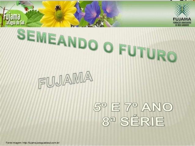 Fonte imagem: http://fujama.jaraguadosul.com.br/