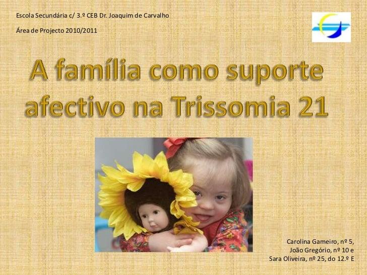 Escola Secundária c/ 3.º CEB Dr. Joaquim de Carvalho<br />Área de Projecto 2010/2011<br />A família como suporte afectivo ...