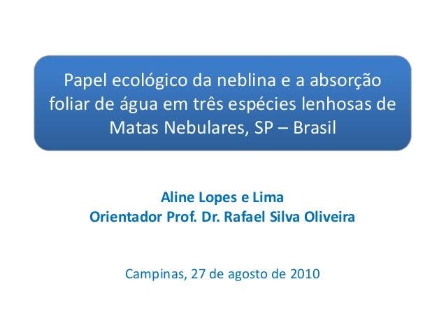 Aline Lopes e Lima Orientador Prof. Dr. Rafael Silva Oliveira Campinas, 27 de agosto de 2010 Papel ecológico da neblina e ...