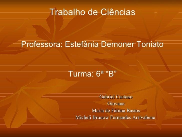 Gabriel Caetano Giovane Maria de Fátima Bastos Micheli Brunow Fernandes Arrivabene  Trabalho de Ciências Professora: Estef...