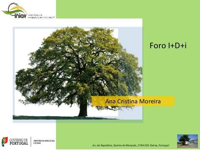 Foro I+D+i Ana Cristina Moreira Av. da República, Quinta do Marquês, 2784-505 Oeiras, Portugal