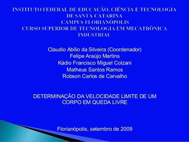 Claudio Abilio da Silveira (Coordenador)             Felipe Araújo Martins        Kádio Francisco Miguel Colzani          ...