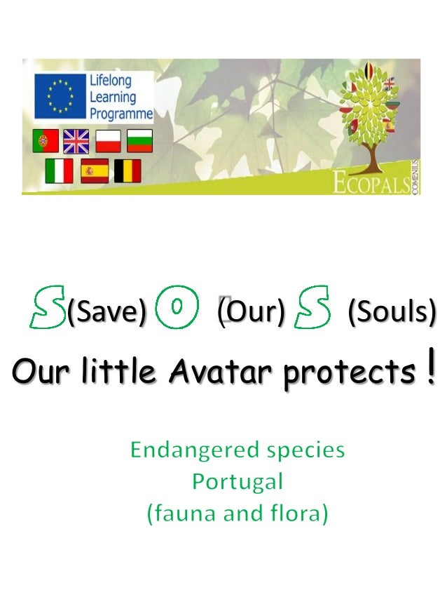 (Save)  (Our)  (Souls)  Our little Avatar protects  !