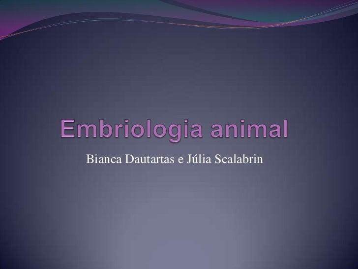 Embriologia animal<br />Bianca Dautartas e Júlia Scalabrin<br />
