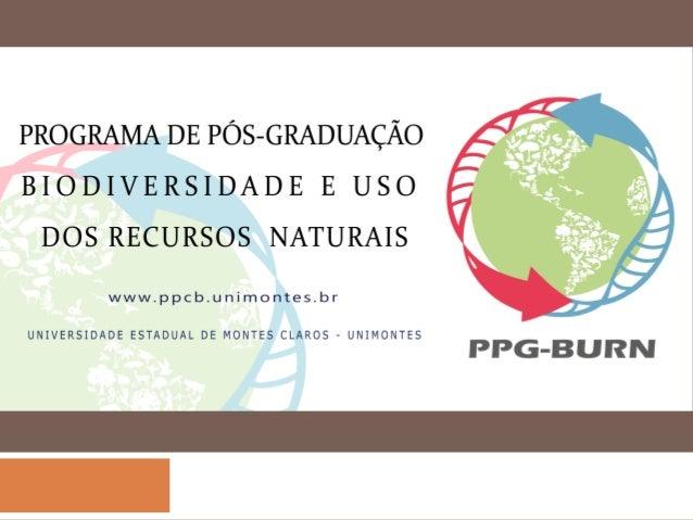 Instituto Federal do Norte de Minas Gerais IFNMG - Campus Januária