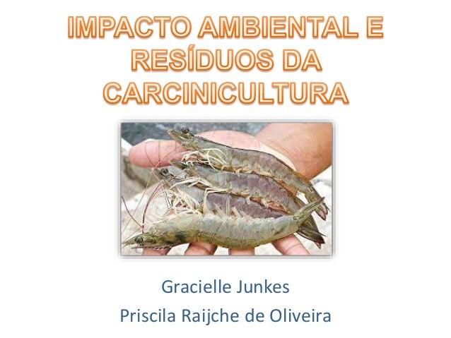 Gracielle Junkes Priscila Raijche de Oliveira