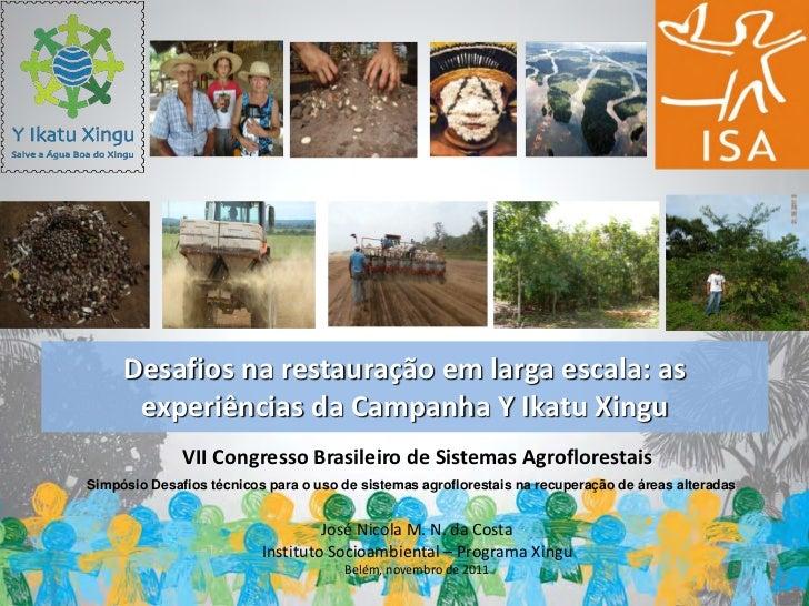 Desafios na restauração em larga escala: as      experiências da Campanha Y Ikatu Xingu              VII Congresso Brasile...