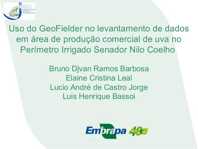 Uso do GeoFielder no levantamento de dados em área de produção comercial de uva no Perímetro Irrigado Senador Nilo Coelho ...
