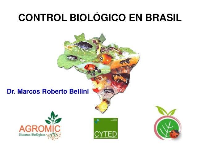 CONTROL BIOLÓGICO EN BRASIL  Dr. Marcos Roberto Bellini