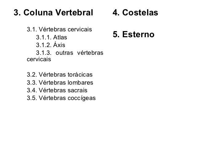 <ul><li>3. Coluna Vertebral </li></ul><ul><li>3.1. Vértebras cervicais </li></ul><ul><li>3.1.1. Atlas </li></ul><ul><li>3....