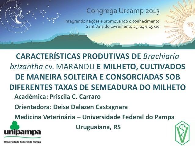 CARACTERÍSTICAS PRODUTIVAS DE Brachiaria brizantha cv. MARANDU E MILHETO, CULTIVADOS DE MANEIRA SOLTEIRA E CONSORCIADAS SO...