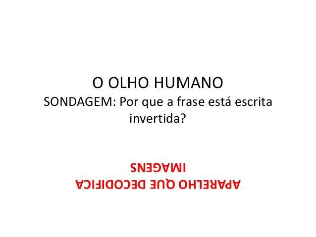 O OLHO HUMANO SONDAGEM: Por que a frase está escrita invertida? APARELHOQUEDECODIFICA IMAGENS