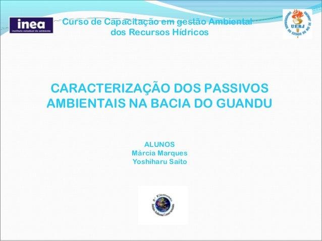Curso de Capacitação em gestão Ambiental            dos Recursos HídricosCARACTERIZAÇÃO DOS PASSIVOSAMBIENTAIS NA BACIA DO...