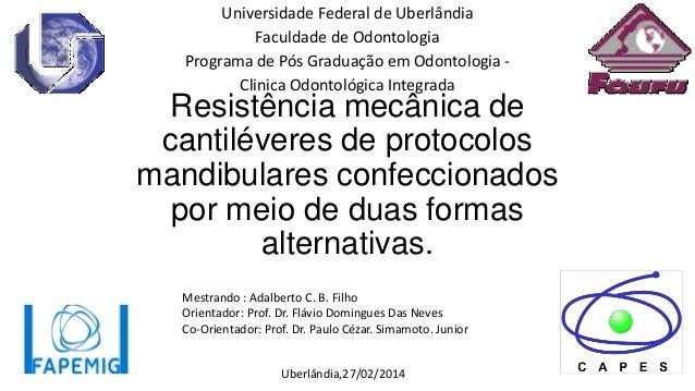 Universidade Federal de Uberlândia Faculdade de Odontologia Programa de Pós Graduação em Odontologia Clinica Odontológica ...